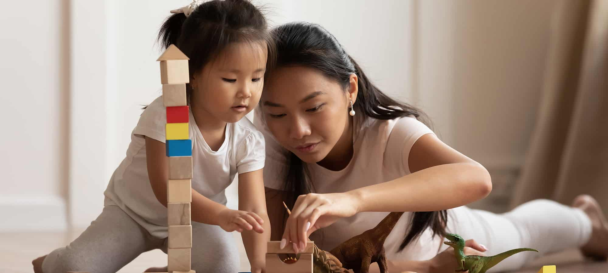 The Importance of Playtime